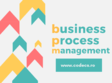 business process management curs practic